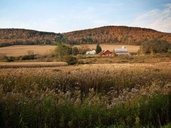 A farm near the town of Dryden in New York. Dryden won its precedent-setting fracking ban case one year ago tomorrow.