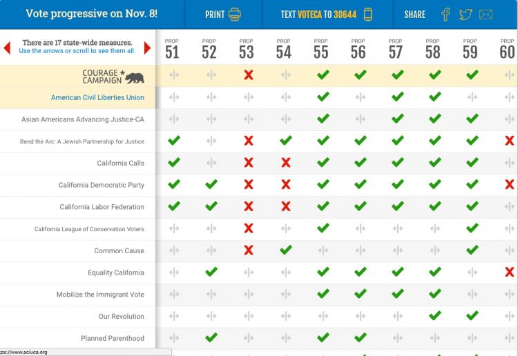 voter-guide screenshot